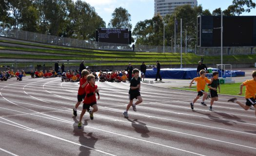 athletics carnival_race_wyvern (2)