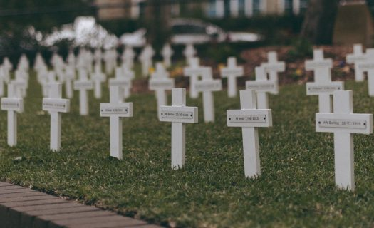 ANZAC Day 2015_white_crosses