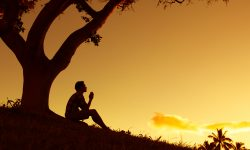 an image of a person sitting under a tree before sunset