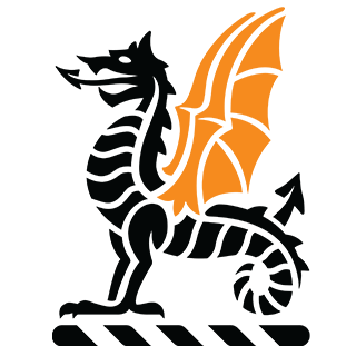 Strong wings